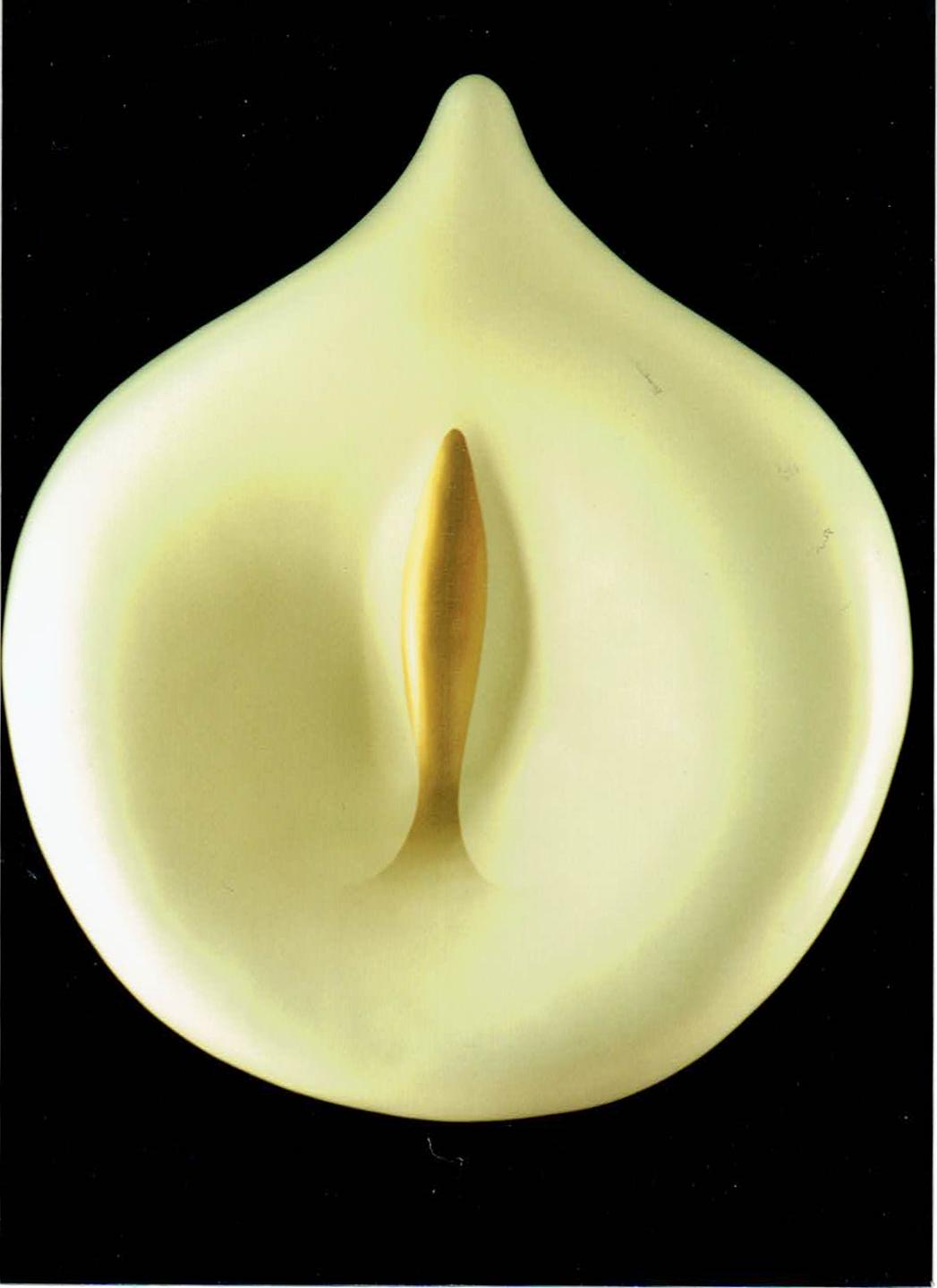 (Calla) White Lily